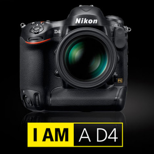 Nikon D4 Preview