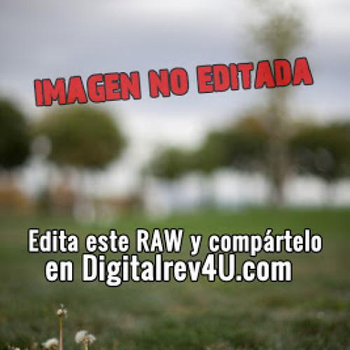 Edición RAW #2