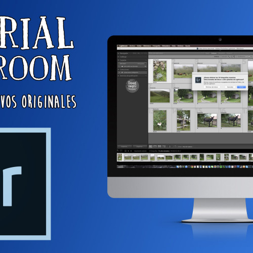 Tutorial de Lightroom – Borrado de fotos