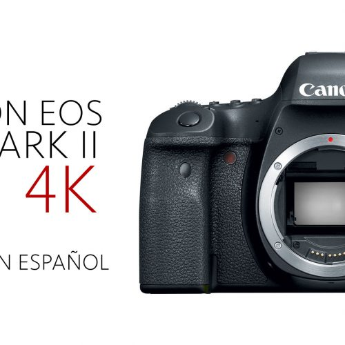 Canon EOS 6D Mark II – Preview