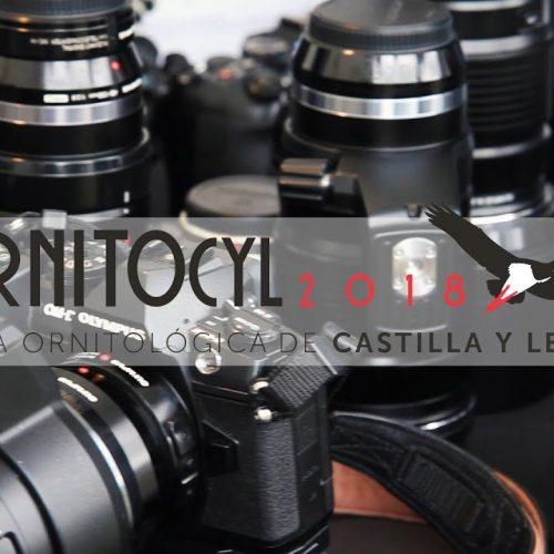 Ornitocyl 2018
