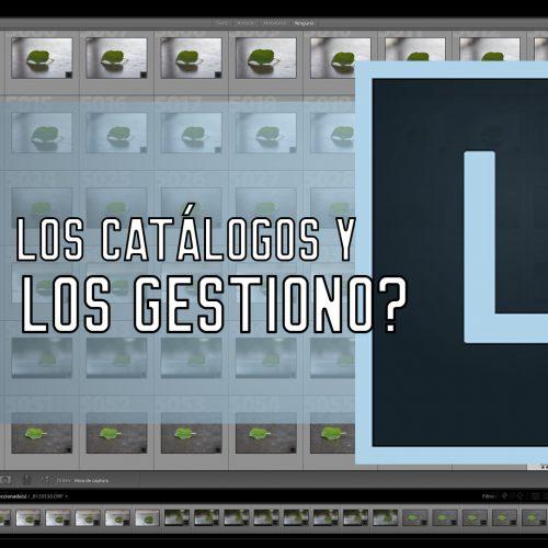 ¿Qué son los catálogos de Lightroom y cómo gestionarlos?